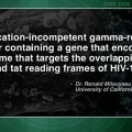 Gene therapy shows modest efficacy for HIV infection