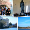 National Cherry Blossom Festival – Washington, DC