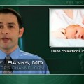 Urine catheterization may be best sampling technique in preterm infants