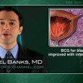 Interferon, vitamins do not improve efficacy of BCG for bladder cancer