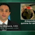 Artesunate better than quinine for treating severe malaria