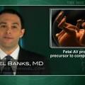 Fetal atrioventricular prolongation not a precursor to complete heart block