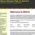 Meet the Breeds: The Basset Hound