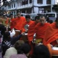 Daily Alms Giving in Luang Prabang, Laos