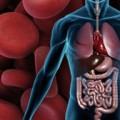 Pre-endoscopy erythromycin improves visualization of bleeding ulcers