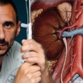 Renin-angiotensin blockade helpful in heart failure with renal disease