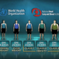 Being Overweight Appears Associated with Slightly Lower All-Cause Mortality Relative to Normal Weight