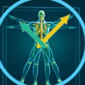 Advances in Rheumatoid Arthritis: Early Diagnosis and a Focus on Chronobiology