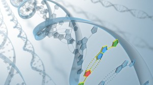 Researchers Amass Largest Cancer-Related Gene Database