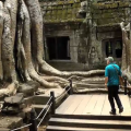 Explore the Ta Prohm Ruins in Siem Reap, Cambodia