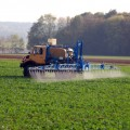 Banned Pesticide DDT Linked to Alzheimer's Disease