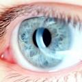 FDA Panel Backs Implantable Lens to Correct Vision