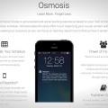 Osmosis: Education Through Gamification