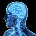 Vaccine Finds Success Combatting Most Fatal Brain Cancer