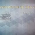 Exploring the Risk Factors and Symptoms of Zika Virus