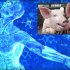 Growing Replacement Human Organs in Pigs?