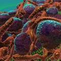 Virtual Reality Goes Nano with Breast Cancer Cell Simulation