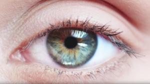 Lab-Grown Cornea Cells Repair Blindness in Animals