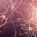 Deficits in Cellular Recycling May Be Key to Better Understanding Parkinson's Disease