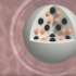 Stem Cell Delivery Micro-Robots Greatly Improve Targeting Accuracy