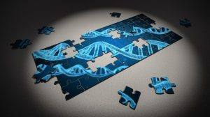 New Gene Therapy Can Permanently Alter Human DNA