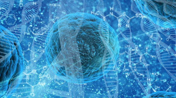 Organ Regeneration Remains Top Priority at 2018WorldStemCellSummit